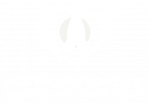 Feel Positive Coaching Holistic Relationship and Divorce Coach Logo